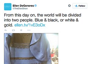 The 14 Most Hilarious Reactions to #DressGate
