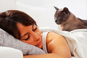 Ask a Vet: Can Cats Suffer From Sleep Disorders?