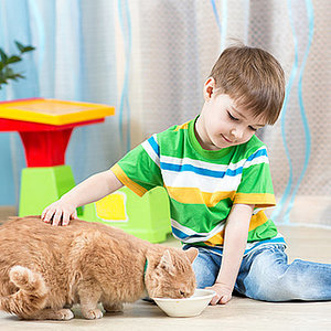 6 Ways to Teach Your Kids Math While Caring for Cats
