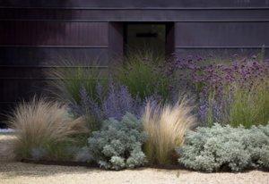 Trending on Gardenista: Spring Awakening