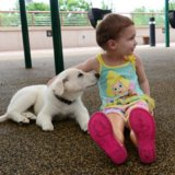 This Little Girl Without Feet Received a Very Special Gift - a Puppy Without a Paw