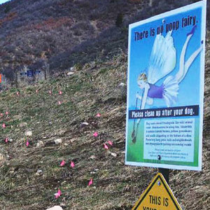 Smuggler Mountain in Aspen Is Blanketed in Dog Poop