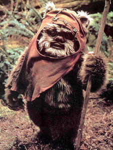 In Honor of <em>Star Wars</em> Day: Dogs That Look Like Wookiees and Ewoks