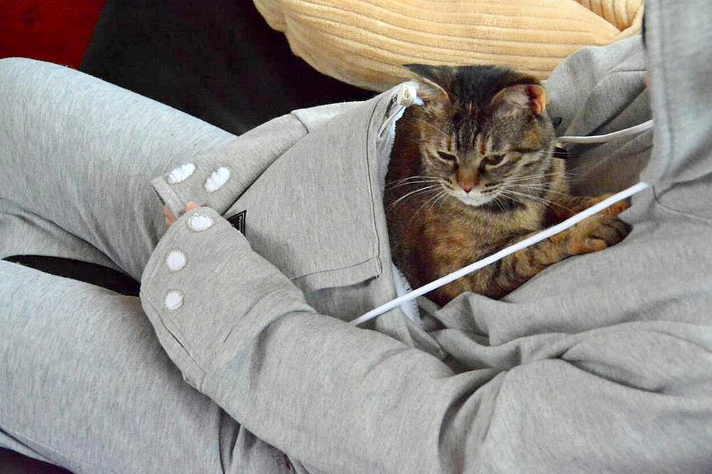 The Hoodie You Never Knew You Needed — 1 With a Pet Pocket