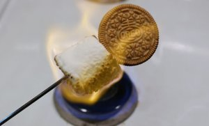 "S'mores-Flavored Oreos Are Here and They Didn't Call Them ""S'moreos"" for Some Reason"