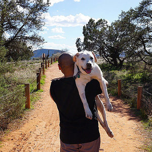 Man Takes His Dying Dog on Cross-Country Road Trip: 'We Gotta Live!' (PHOTOS)