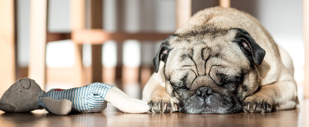 12 Tips to Help You Sleep Better Tonight