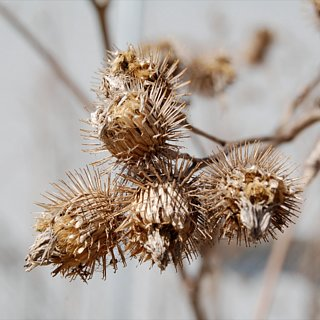 How to Remove Burrs