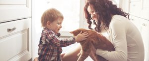 How to Make Your Home a Happier Place For Pets