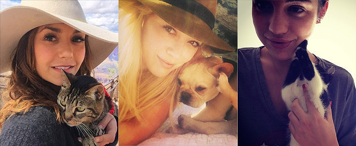 Adorable Pictures of Celebrities and Their Favorite Furry Friends