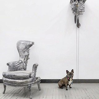 The Dog That Is Taking the Art World by Storm
