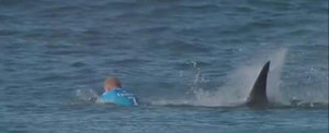 Lucky Escape: Watch Mick Fanning Fend Off a Massive Shark