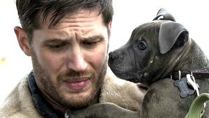 9 Perfect Photos of Tom Hardy With Dogs for No Particular Reason