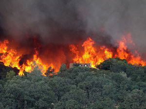 Jerry Brown Declares State Of Emergency As California Wildfires Rage