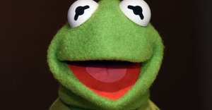 Kermit The Frog Has A New Pig In His Life