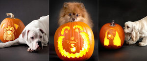 22 Downloadable Dog Breed Pumpkin Stencils