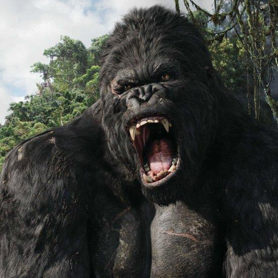 King Kong and Godzilla Movie News