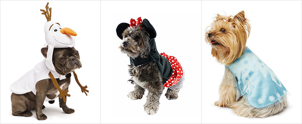 Dress Your Dog in Disney For Halloween This Year
