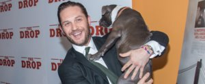 Try Not to Smile at These Photos of Tom Hardy Holding Dogs