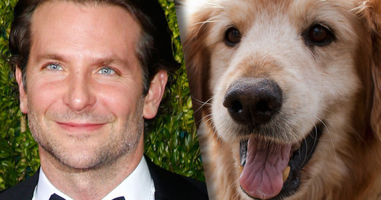 Bradley Cooper to Voice a Dog