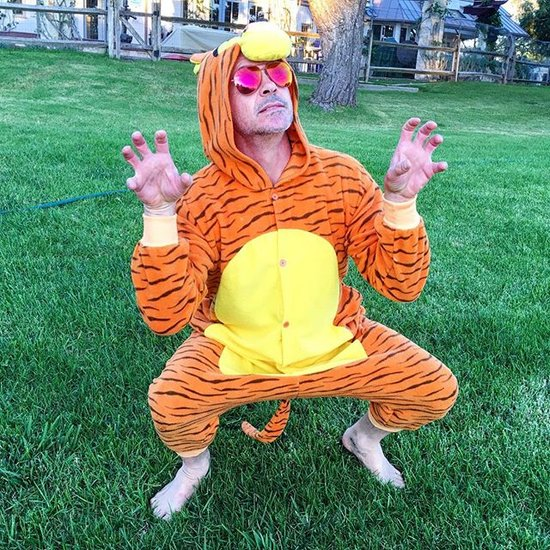 Robert Downey Jr. Dresses as Tigger For Boy With CF