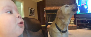 5-Month-Old Boy Gets Involved in a Howling Battle With His Dogs in This Adorable Video