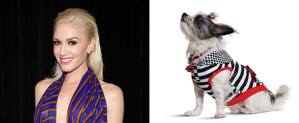 Gwen Stefani Created a Line of Dog Clothes, and We Want Everything
