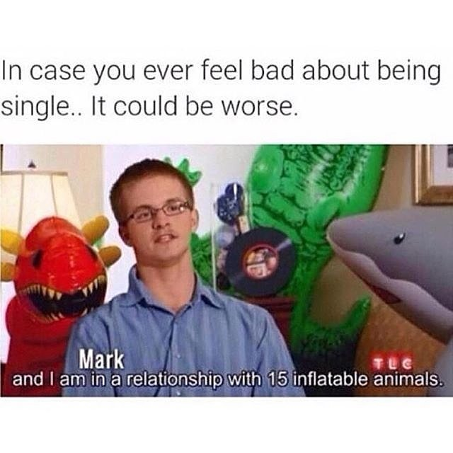 Single On Valentines Day Dog Meme