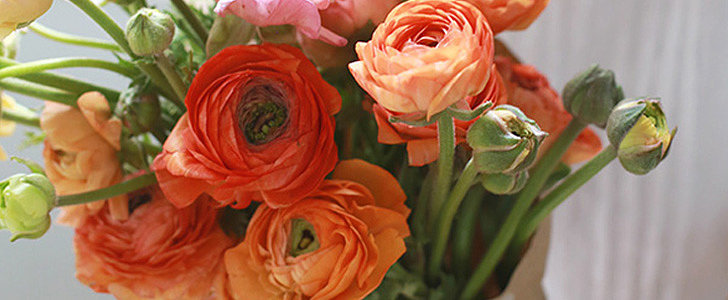 Use the Language of Flowers to Show Your Love This Valentine's Day