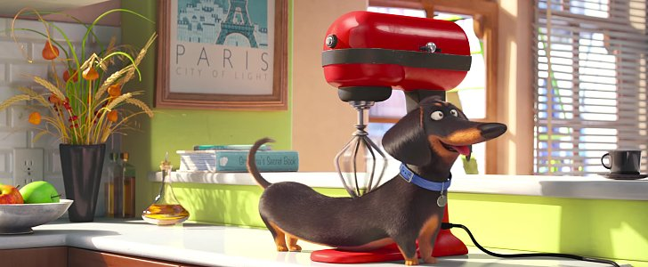 If You've Ever Wondered What Your Pets Do When You Leave, This Movie Is For You