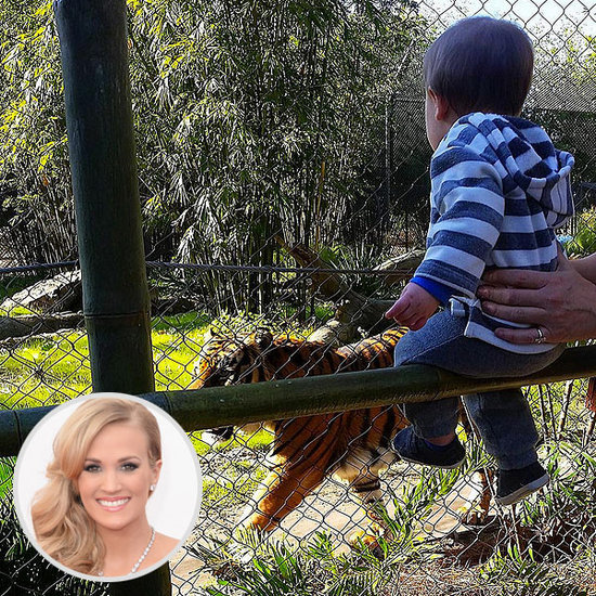 Eye on the Tiger! Carrie Underwood's Son Makes a 'New Friend' at the Zoo