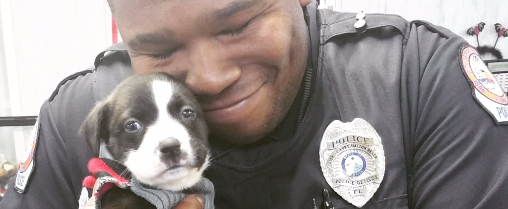 This Cop Was Just Doing His Job When He Found His Forever Friend