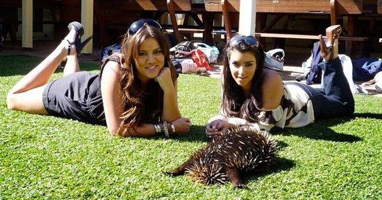 Khloe Kardashian Shares Throwback Photos of Herself and Kim With Koalas, Kangaroos on 2008 Australia Trip