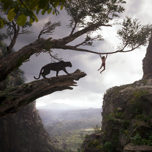 The Jungle Book Trailer