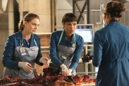 FOX Sets 'Bones' Return for April 14