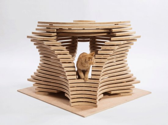 Architects Designed Houses for Cats; What Do the Cats Think?