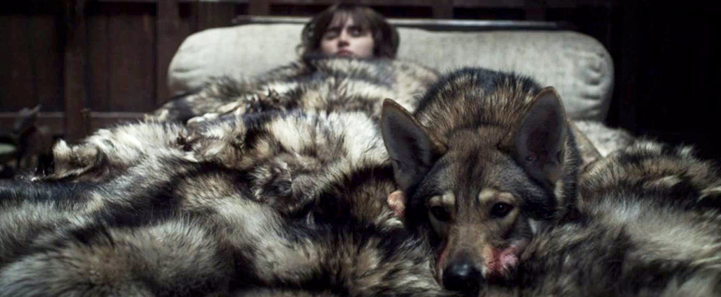 A Quick Rundown of All 6 of the Starks' Direwolves on Game of Thrones