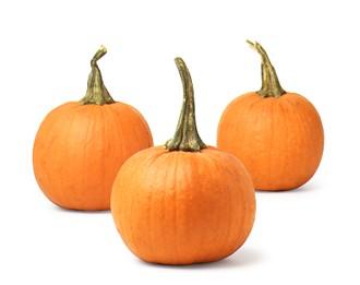 Easy and Fast Chicken Pumpkin Stew Recipe 2009-10-27 12:25:31