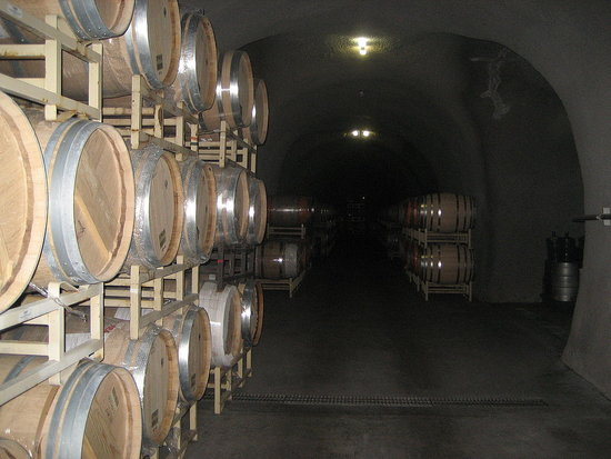 Have You Ever Taken a Tour of a Winery?