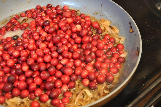 Cranberry Caramelized Onion Sauce