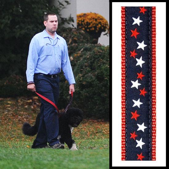 Found! Bo Obama's Starry Leash