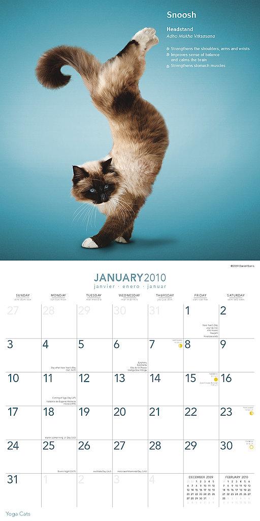 January — Headstand