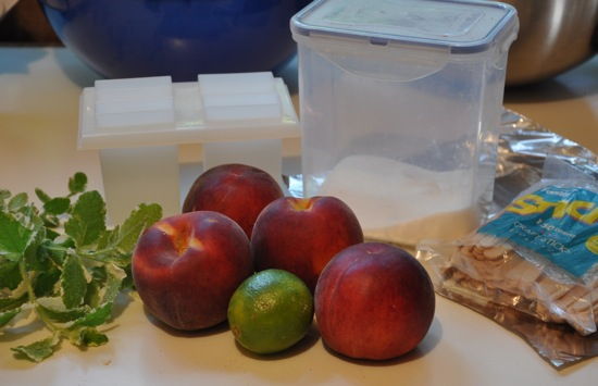 Peach Mint Popsicles 2009-06-29 09:55:57