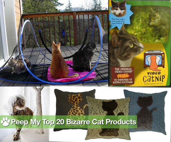 Is Your Kitty's Life Complete Without These Kooky Products?