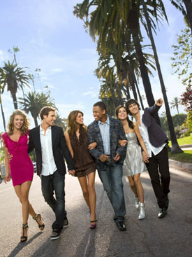 Questions for 90210 Before Season Two