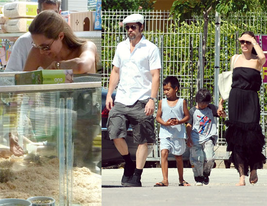 Photos of Brad Pitt, Angelina Jolie, Maddox Jolie-Pitt, Pax Jolie-Pitt Buying Gerbils in France