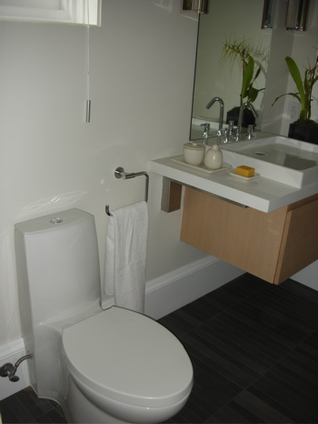 Do You Have a Dual-Flush Toilet?