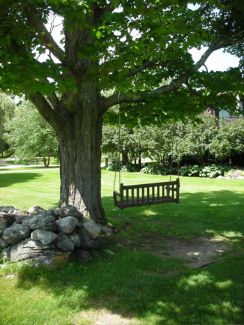 Do You Have a Swing on Your Property?