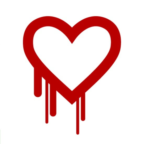 Heartbleed OpenSSL Bug
