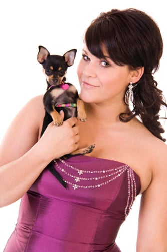 Have You Attended a Black-Tie Event With Your Pet?